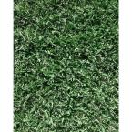 Shade Sod 1600 Total sq. ft. Ship to FL and SC (Quantity of 1= 4 Pallets Delivered to Customer)
