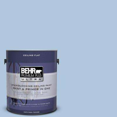 1 gal. #PPU14-13 Ceiling Tinted to Caspian Tide Flat Interior Paint and Primer in One