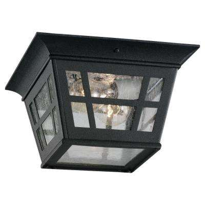 Herrington 2-Light Outdoor Black Hanging/Ceiling Pendant Fixture