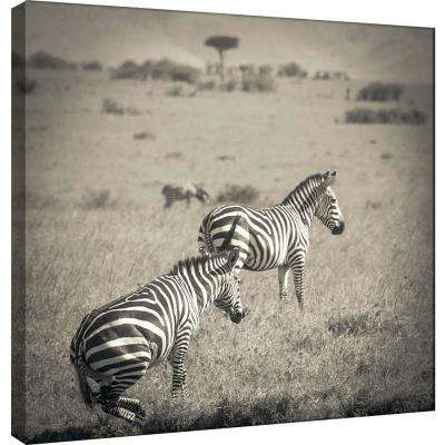 15.in x 15.in ''Leaping Zebra'' Printed Canvas Wall Art