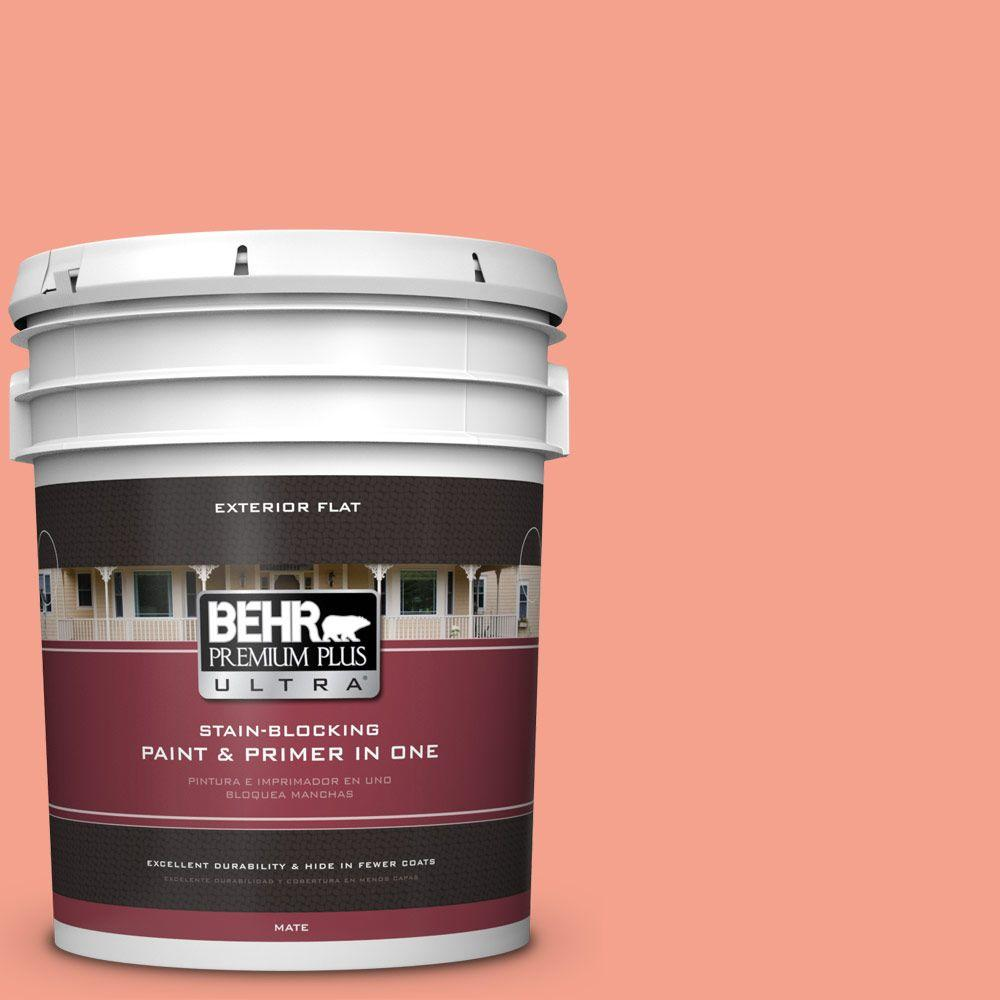 BEHR Premium Plus Ultra Home Decorators Collection 5-gal. #HDC-MD-18 Peach Mimosa Flat Exterior Paint