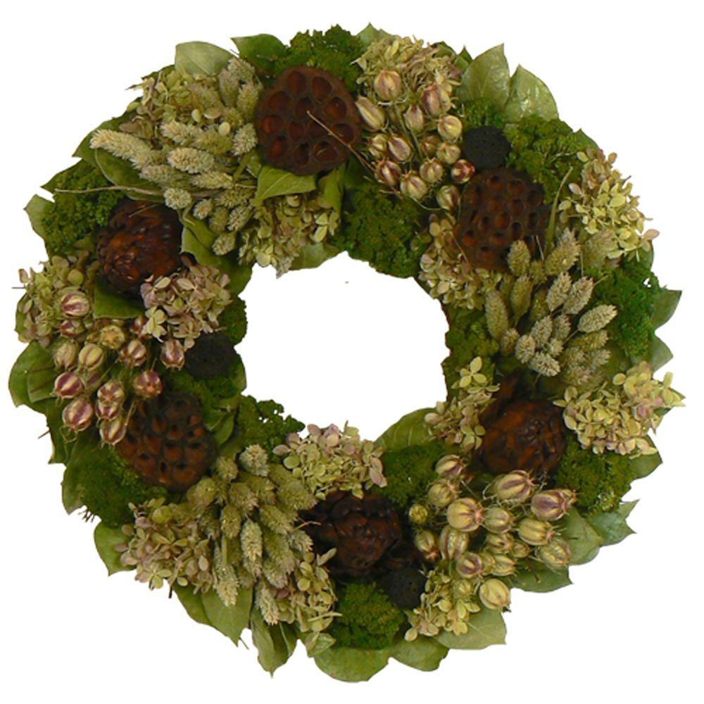The Christmas Tree Company Lotus Lagoon 18 in. Dried Floral Wreath-DISCONTINUED