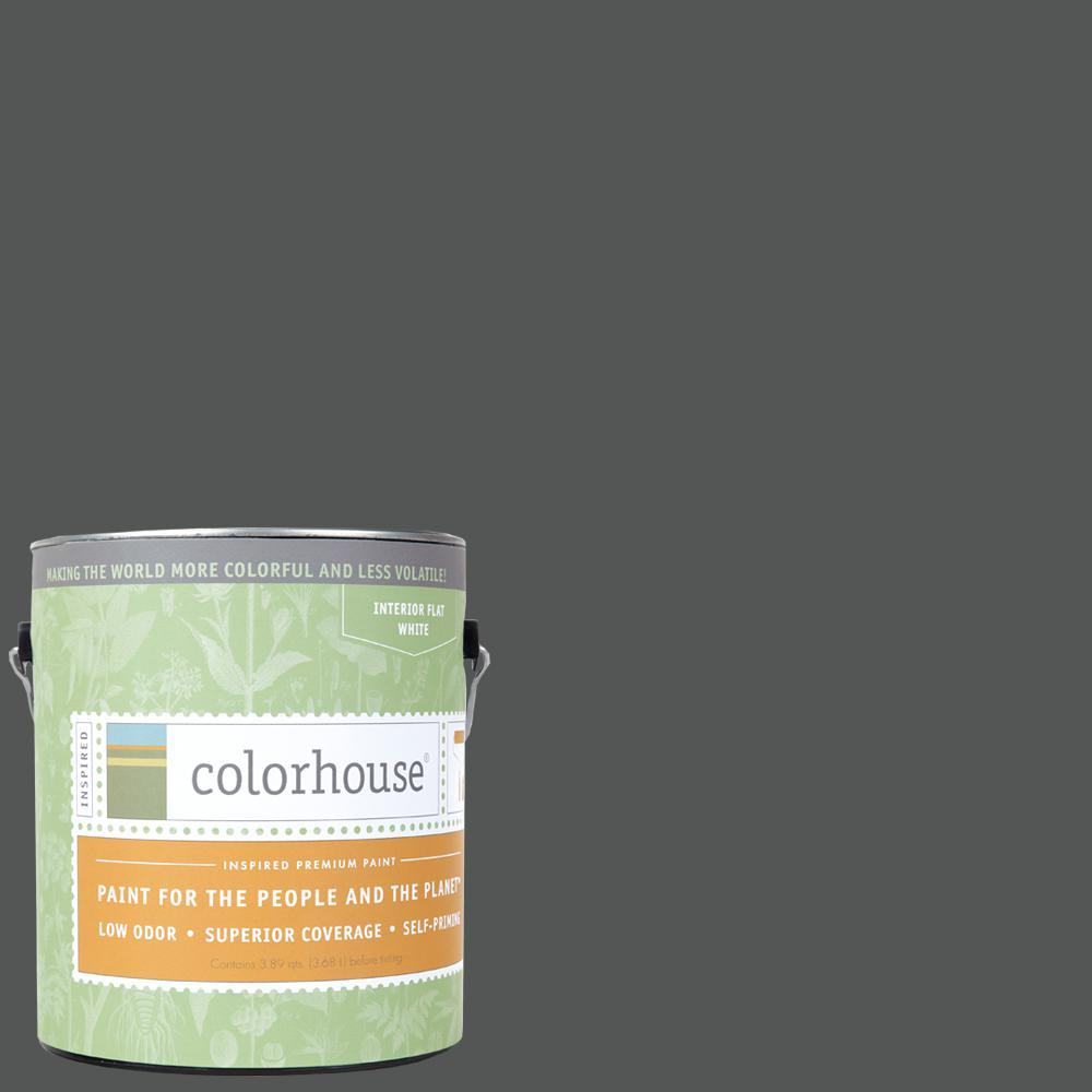 Metal .05 Flat Interior Paint 491557   The Home Depot