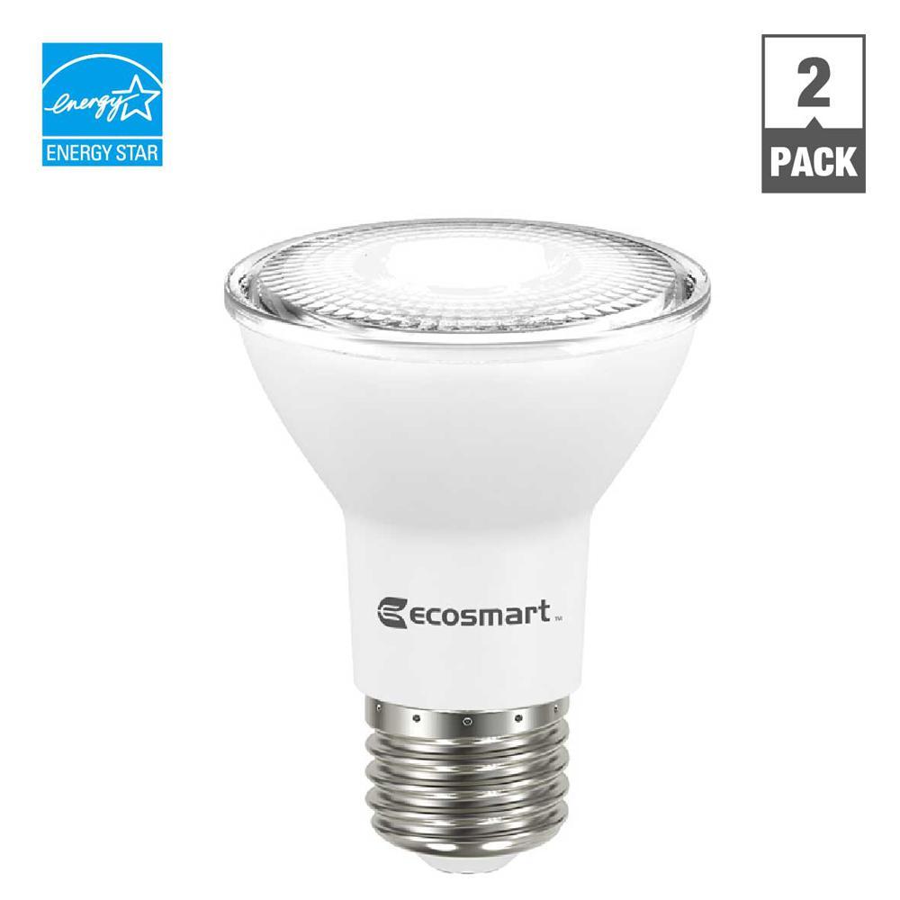 50W Equivalent Day Light PAR20 Dimmable LED Flood Light Bulb (2-Pack)