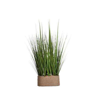 23 in. x 15 in. x 28 in. Tall Onion Grass in Hemp Rope Container
