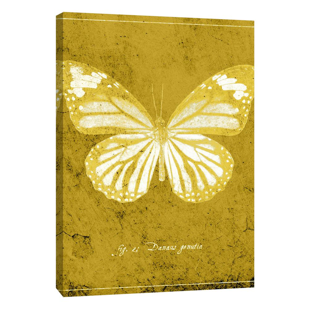 PTM Images 12.in x 10.in \'\'Butterfly J\'\' Printed Canvas Wall Art-9 ...