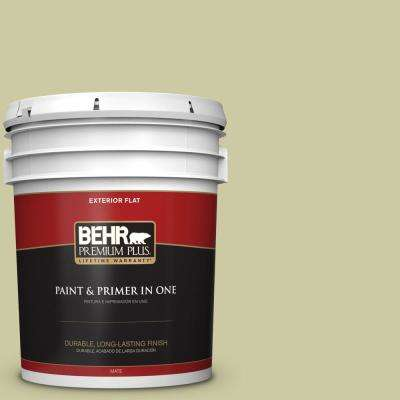 5 gal. #MQ4-41 Anjou Pear Flat Exterior Paint and Primer in One