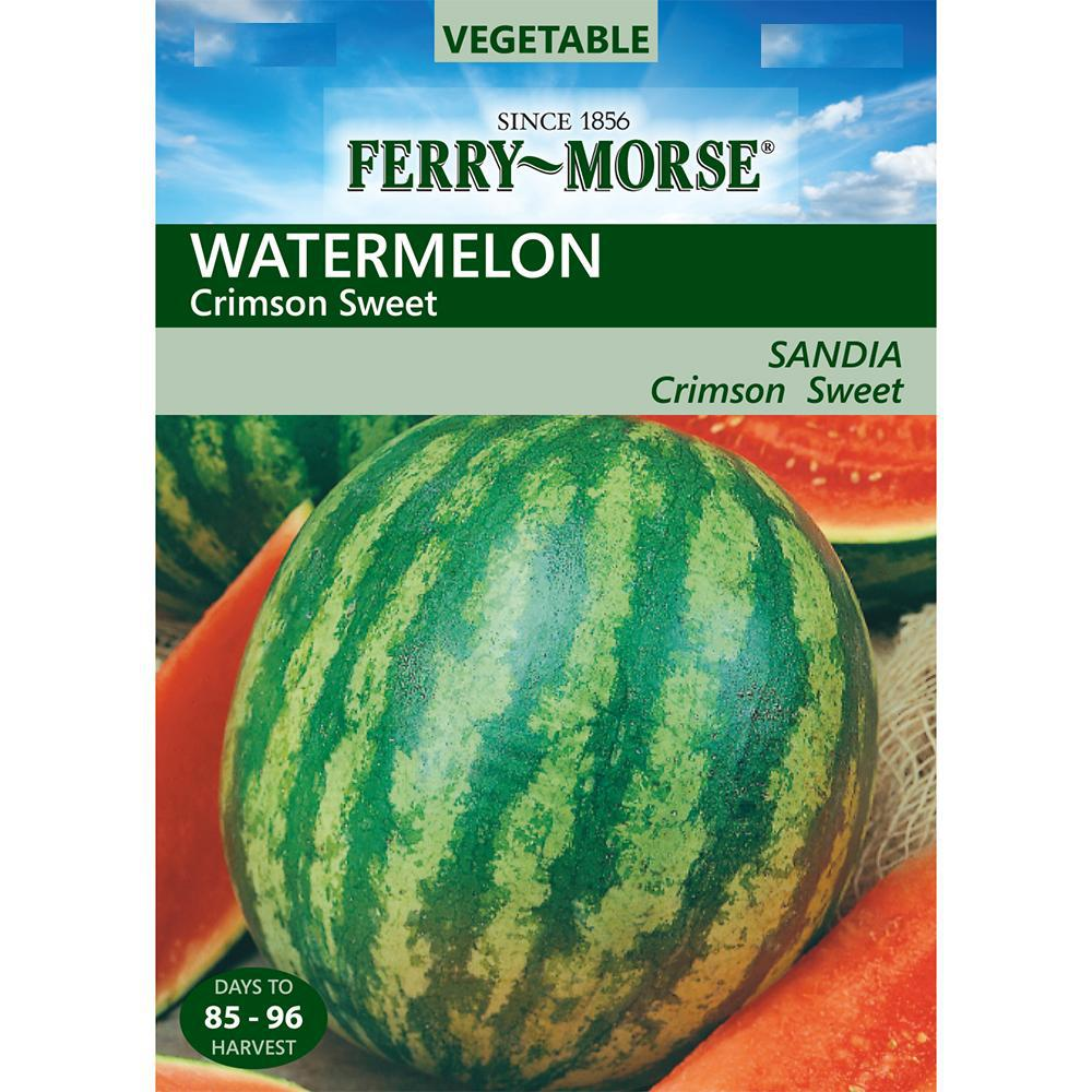 Ferry Morse Crimson Sweet Watermelon Seed 1417 The Home Depot