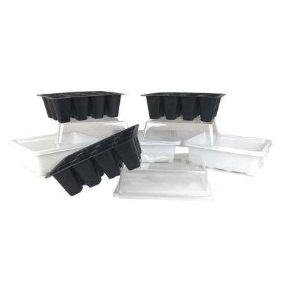 12-Plant Germination Tray and Dome (3-Pack)