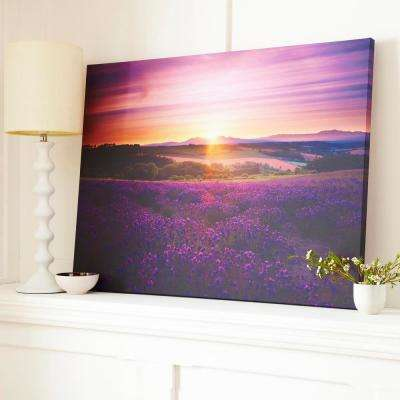 "31 in. x 24 in. ""Lavendar Sunset"" by Graham and Brown Printed Canvas Wall Art"