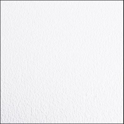 Greenhouse/Grow Room Absolute White Ceramic Commercial/Residential Vinyl Sheet Flooring 5 ft. W x 10 ft. L