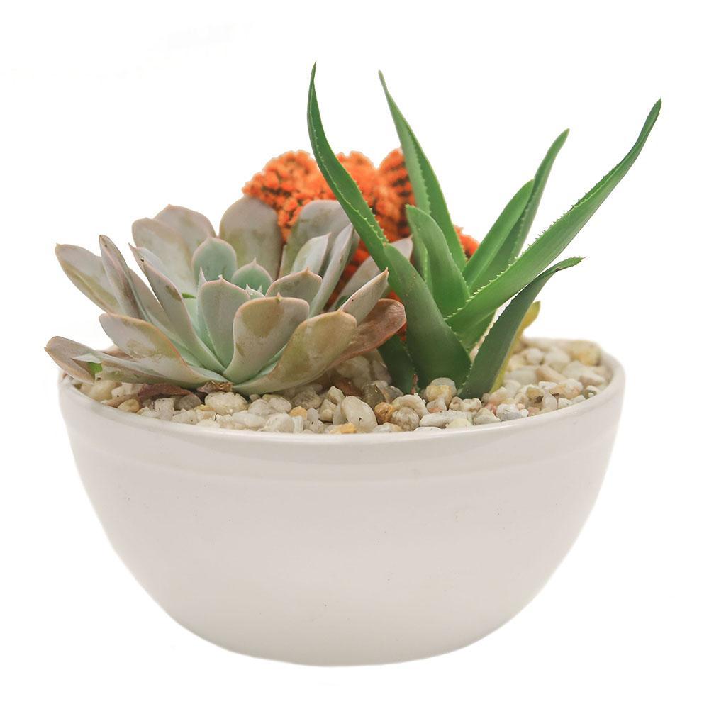 Orange Desert Gems Garden in 6 in. Gloss Ceramic Bowl