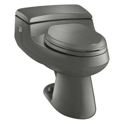 San Raphael Comfort Height 1-Piece 1.0 GPF Single Flush Elongated Toilet in Thunder Grey, Seat Included