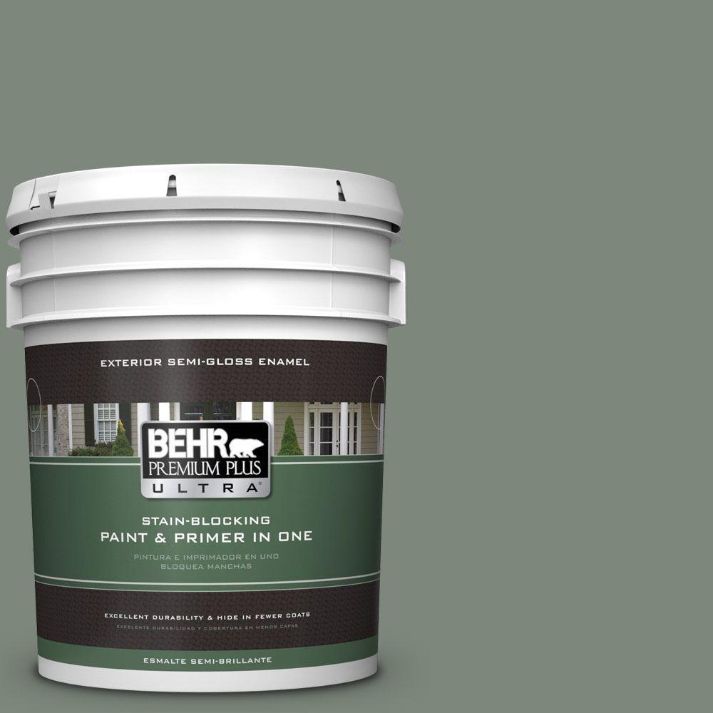 5-gal. #ECC-49-3 Forest Moss Semi-Gloss Enamel Exterior Paint