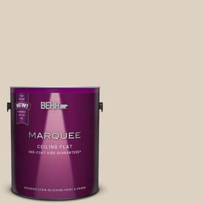 1 gal. #PPU7-10 Tinted to Roman Plaster One-Coat Hide Flat Interior Ceiling Paint and Primer in One