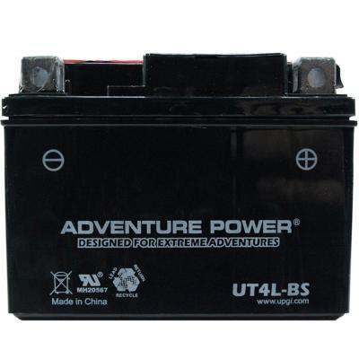 Dry Charge 12-Volt 3 Ah Capacity D Terminal Battery