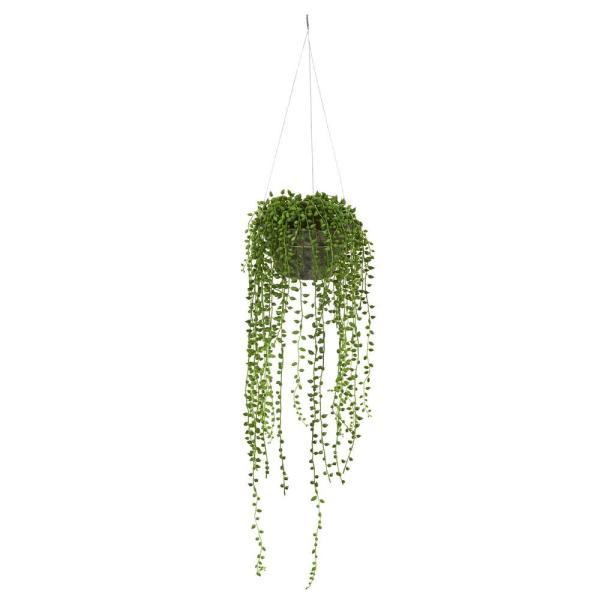 Nearly Natural Indoor String Of Pearl Artificial Plant Hanging Basket 4247 The Home Depot