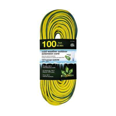 100 ft. 12/3 SJEOW Cold Weather Extension Cord with Lighted End