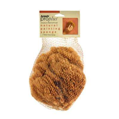 5 in. Painting Natural Sea Sponge Coarse Texture (Case of 6)