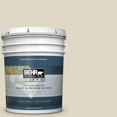 5 gal. #HDC-WR15-1 Zero Degrees Satin Enamel Interior Paint