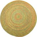 Winslow Sand Natural Multicolored 4 ft. x 4 ft. Round Indoor/Outdoor Braided Area Rug