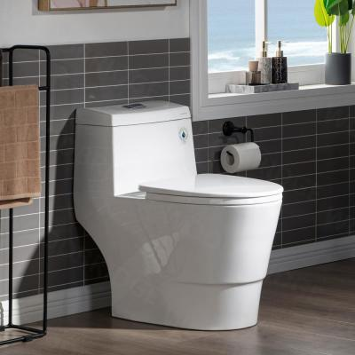 Everette 1-Piece 1.0/1.6 GPF High Efficiency Dual Flush Elongated Toilet, Map Flush 1000 Grams and WaterSense Toilet