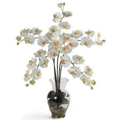 31 in. Phalaenopsis Liquid Illusion Silk Flower Arrangement in Cream