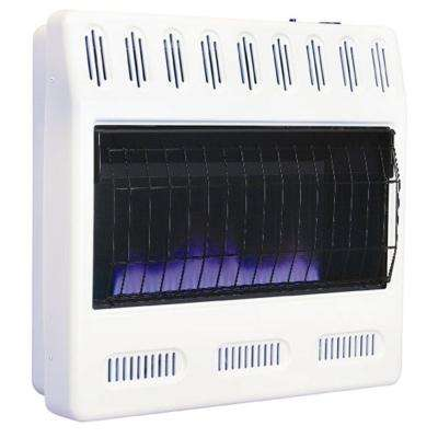 30,000 BTU/hr Blue Flame Heater Propane Gas Heater with Automatic Thermostat