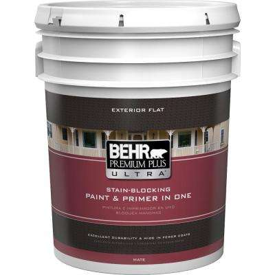 5 gal. Ultra Pure White Flat Exterior Paint