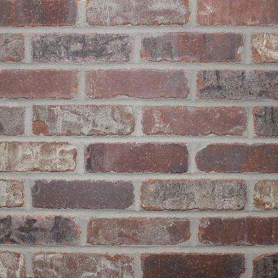 Brickwebb Sheets Flats Castle Gate 28 in. x 10.5 in. x 13mm Clay Thin Brick Mesh-Mounted Mosaic Tile (8.7 sq. ft. /case)
