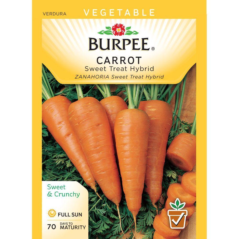 Carrot Sweet Treat Hybrid Seed