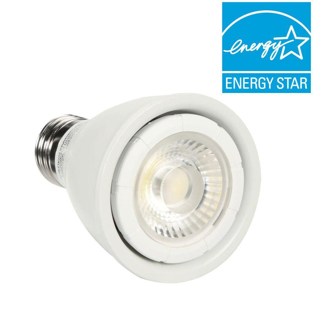 EcoSmart 50W Equivalent Daylight (5000K) PAR20 LED Flood Light Bulb