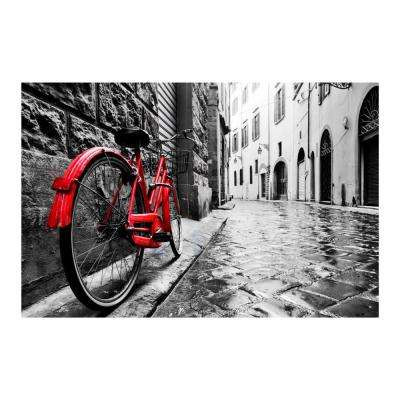 "47 in. x 32 in. ""The Red Bike"" Tempered Glass Wall Art"