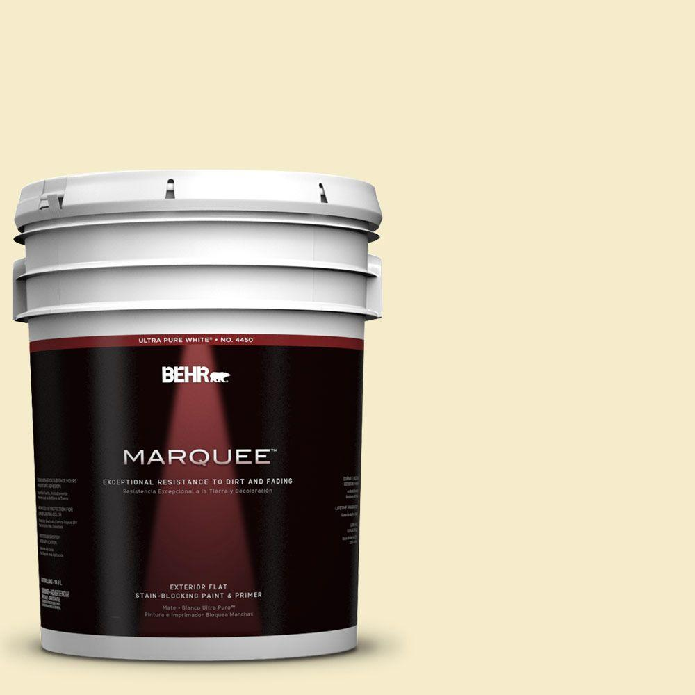 BEHR MARQUEE 5-gal. #390E-2 Starbright Flat Exterior Paint