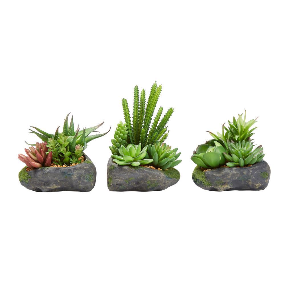 Artificial Succulent Plant Arrangements in Assorted Sizes (Set of 3)