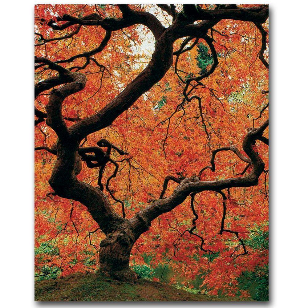 Trademark Fine Art 35 in. x 47 in. Japanese Tree I Canvas Art