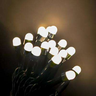 200 light mini globe warm white low voltage led string light