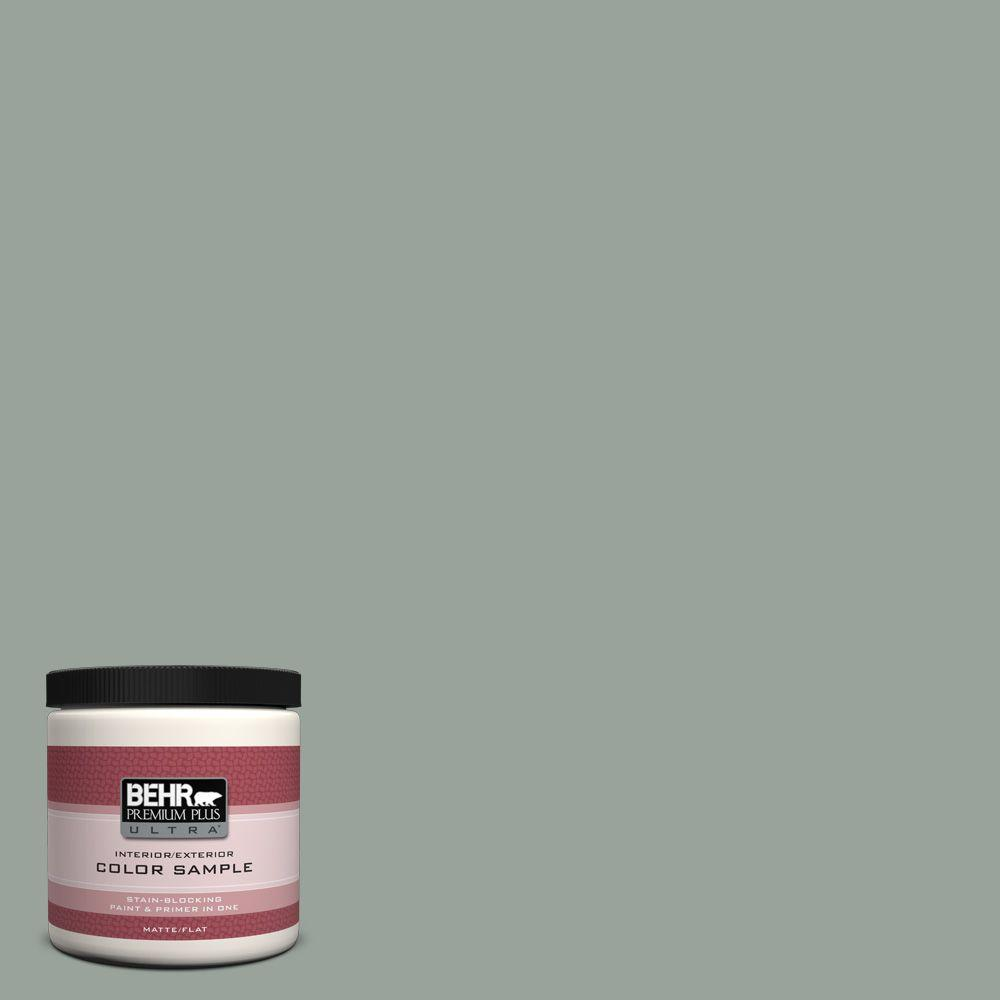 8 oz. #700F-4 Pinedale Shores Interior/Exterior Paint Sample