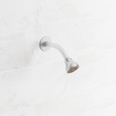 Eco-Performance 1-Spray 2.5 in. Single Wall Mount Fixed Shower Head in Chrome