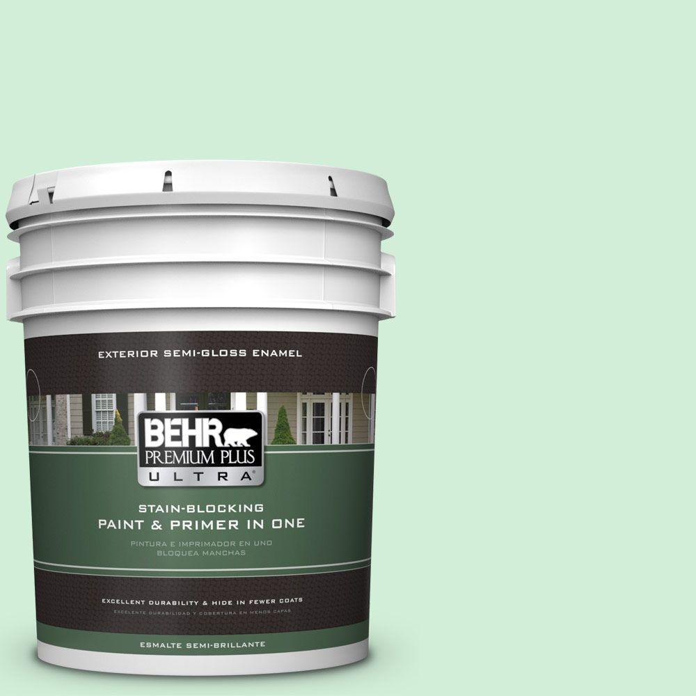 BEHR Premium Plus Ultra 5-gal. #P400-2 End of the Rainbow Semi-Gloss Enamel Exterior Paint, Greens