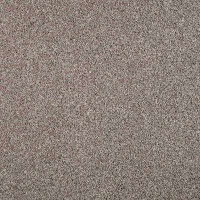 Barx I - Color Weathered Wood Texture 12 ft. Carpet