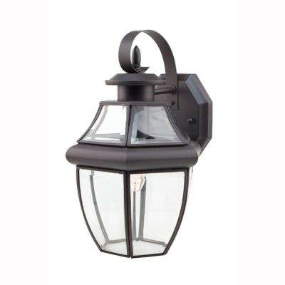Contemporary 1-Light Outdoor Black Coach Lantern with Clear Glass