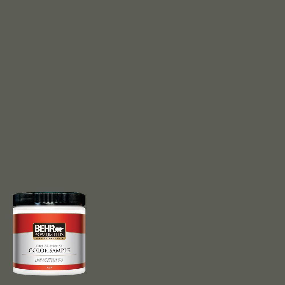 8 oz. #N380-7 Black Bamboo Interior/Exterior Paint Sample