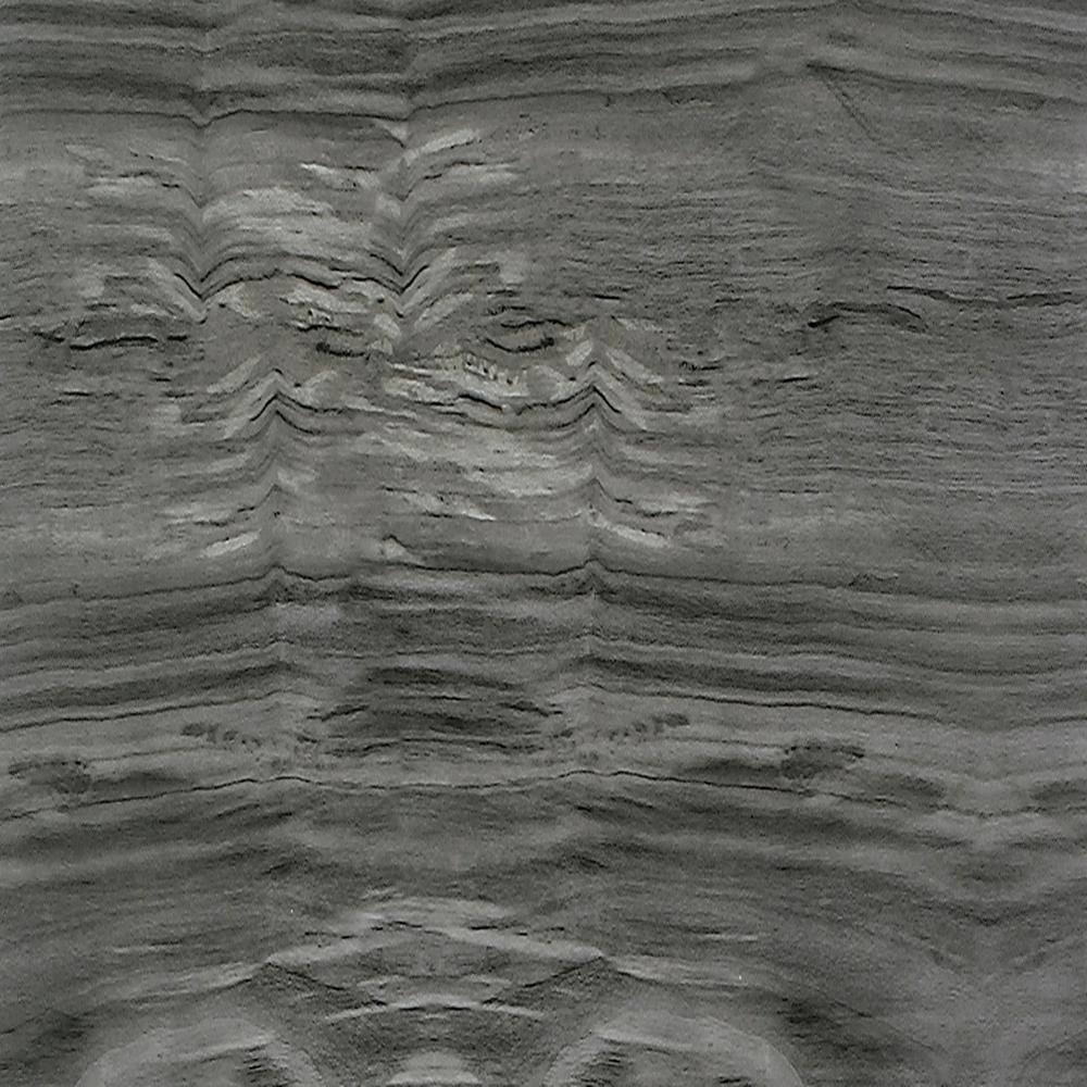 Aurora Misty Morning 8 in. x 39.5 in. Loose Lay Vinyl Plank Flooring (25.83 sq. ft./case)