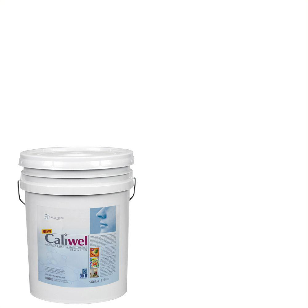 Merveilleux Caliwel Home U0026 Office 5 Gal. Guardian White Latex Premium Antimicrobial And  Anti Mold