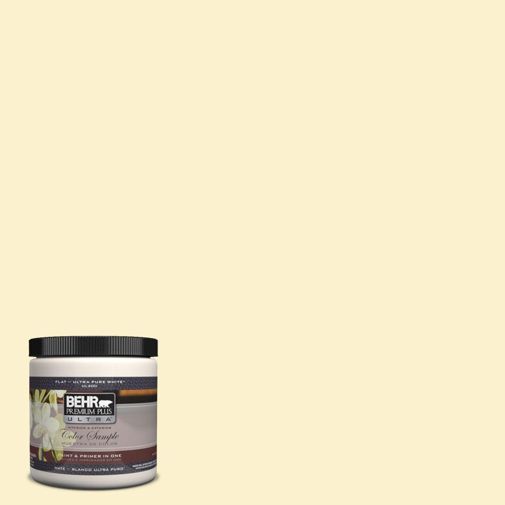 BEHR Premium Plus Ultra 8 oz. #370A-1 Moon Mist Interior/Exterior Paint Sample