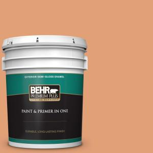 Behr Premium Plus 5 Gal M220 5 Roasted Seeds Semi Gloss Enamel Exterior Paint And Primer In One 540005 The Home Depot