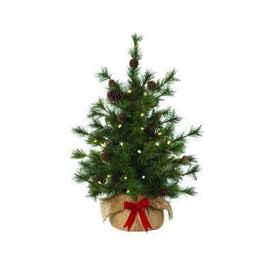 24 in. Pre-Lit LED Bristle Cone Pine Burlap Artificial Table Tree