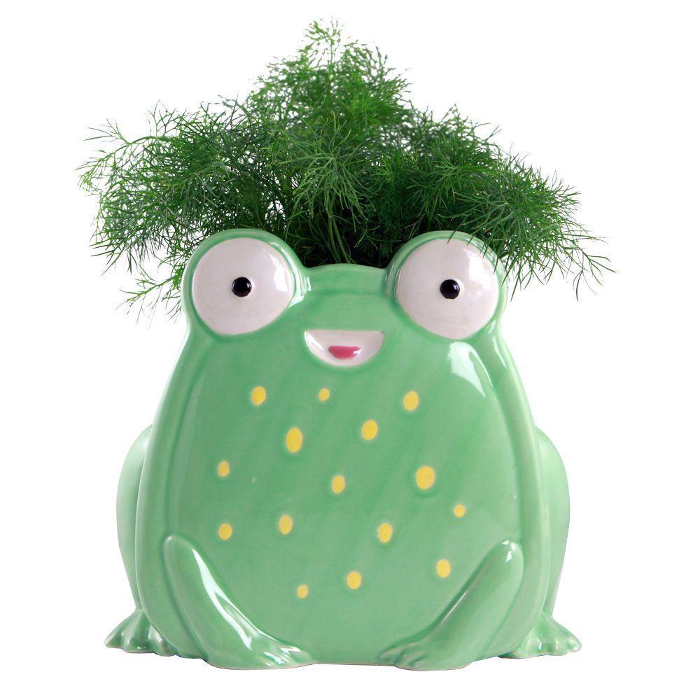 Green Ceramic Whimsical Frog