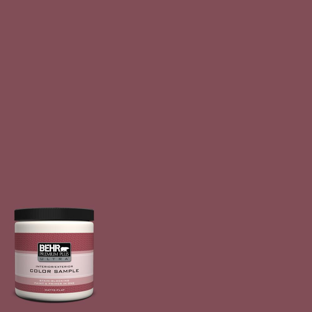 8 oz. #HDC-SP14-11 Rouge Charm Flat/Matte Interior/Exterior Paint Sample